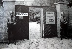 frikorps danmark hverveplakat